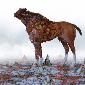 horse-decoherent